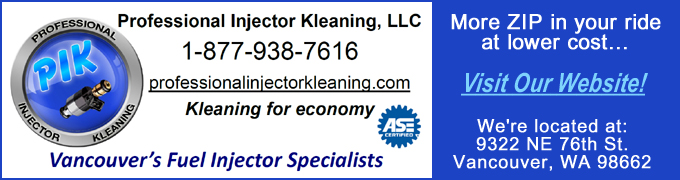 Professional Injector Kleaning