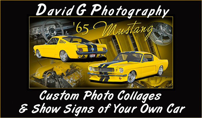 David G Photography